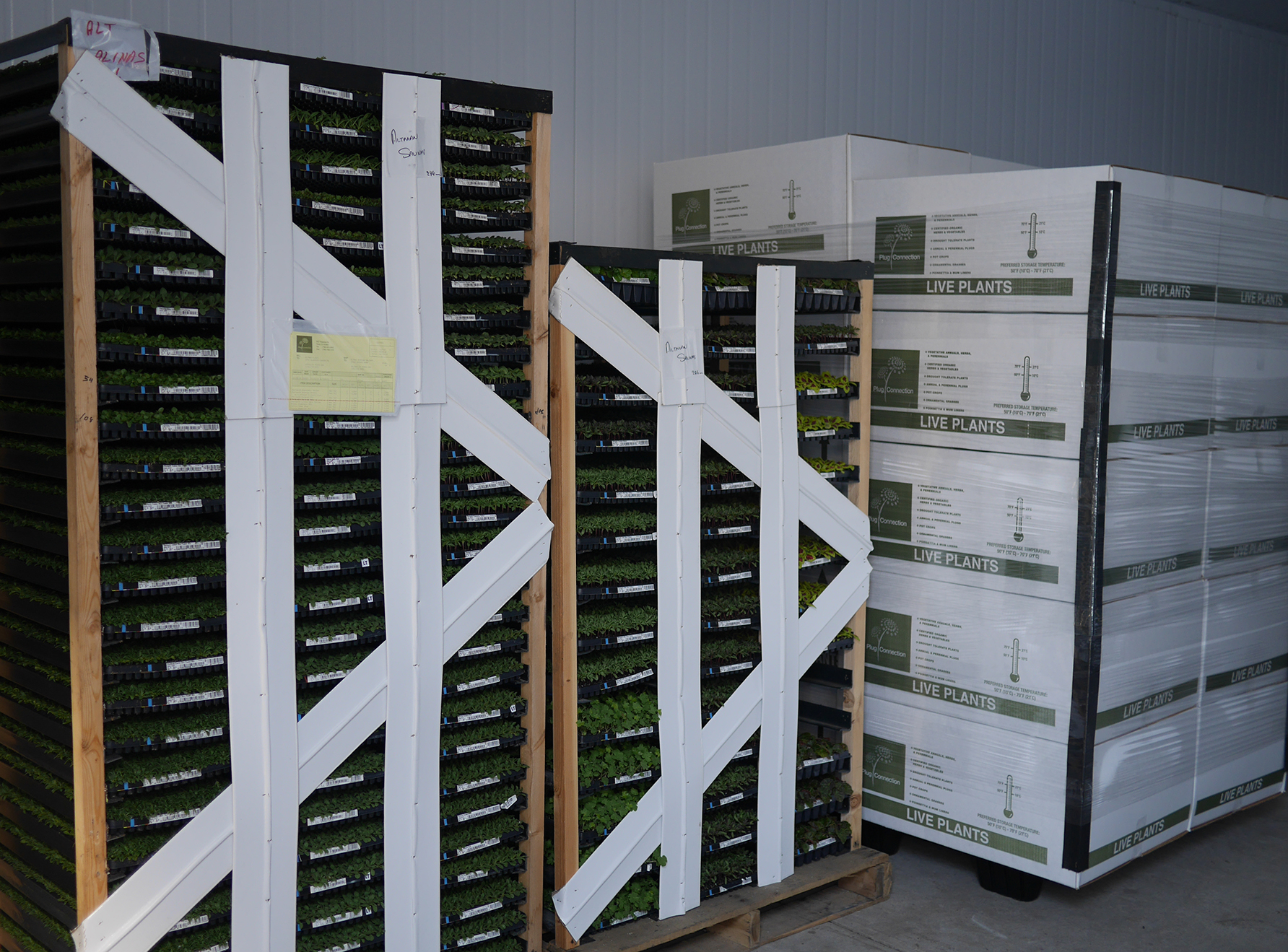 PCpallets