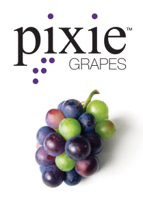 PixieGrapesTM_logo-cluster-209x300