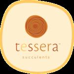 tessera_logo
